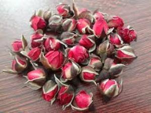 Nơi nào bán trà hoa hồng chất lượng nhất, giá tốt nhất?