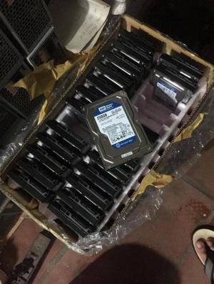 Thanh lý đk ít ổ cứng wd 250G, ổ tháo máy đồng bộ nên rất đẹp