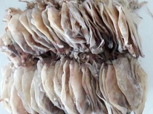 mực khô giá rẻ 220k/kg (170 con)