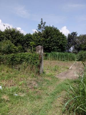 đất thổ cư 15m x 50m  đường đất xã phú hòa đông ,củ chi.
