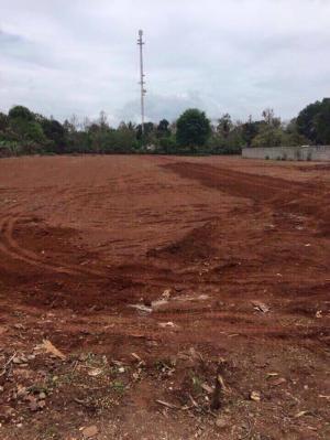Bán gấp lô đất gần KCN Tân An 5*36