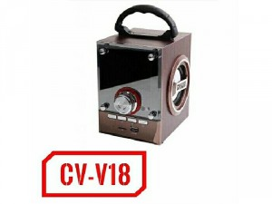 Loa bluetooth thùng gỗ FM CV - V18