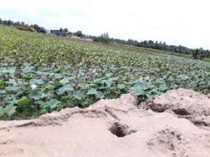 Bán đất ven sông cam kết lợi nhuận 10% năm