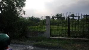 Chia gia sản bán lô đất thổ cư bình chánh...