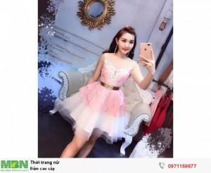 Đầm cao cấp