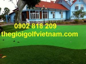 Cỏ golf trải sàn, cỏ golf nhân tạo