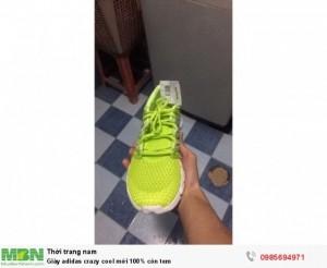 Giày adidas crazy cool mới 100% còn tem