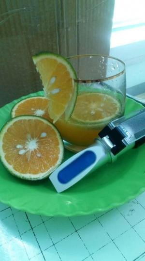 Máy đo độ Ngọt (brix) của trái cây.