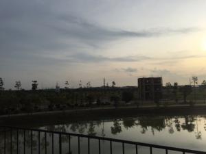 Đất Làng Sen Việt Nam, đang chờ nhận sổ.