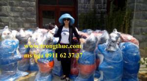 bán nhanh bán gấp thùng rác mgb 660 lít ở đà nẵng, quảng nam, huế, kon tum