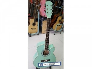 Guitar acoustic Fenix FG 150B