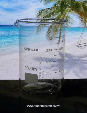 Ca đong thể tích thủy tinh thí nghiệm 1000ml