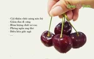 Cherry đỏ Úc 599k KLEVER FRUITS