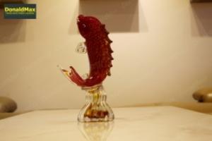 Dercor - Cá rồng đỏ