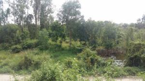 Bán 1.600m đất cửa ngỏ Khu công nghiệp Long Giang