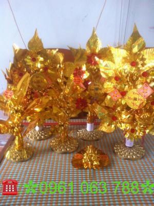 Chuyên Sỉ số Lượng Lớn Cây Cành vàng Lá Ngọc Giá rẻ Nhất Miền Bắc