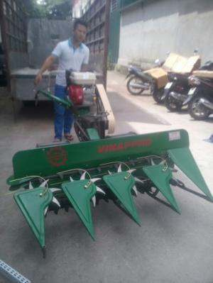 Máy gặt lúa xếp dãy chạy xăng chất lượng cao