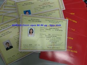 Học Kế Toán Trưởng Hành Chính Sự Nghiệp Của Bộ Tài Chính ở Hồ Chí Minh