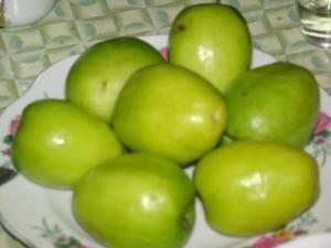giống táo