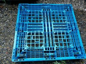Pallet nhựa cũ tại quận Tân Phú, miễn phí vận chuyển số lượng lớn. Liên hệ: 0906193788 (24/24)