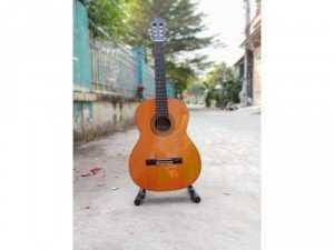 Guitar suzuki sg 200