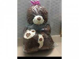 Gấu ôm teddy