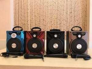 Loa Bluetooth Karaoke Xách Tay Kèm Micro