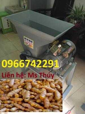 Máy nghiền tinh bột nghệ - 100kg/giờ - giao hàng toàn quốc