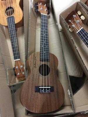 Bán Đàn ukulele concert baritone nhiều mẫu mã đẹp giá rẻ tại Hóc Môn, TPHCM