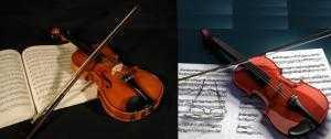 Chuyên Bán Đàn violin uy tín chất lượng giá rẻ nhất tại Hóc Môn, TPHCM