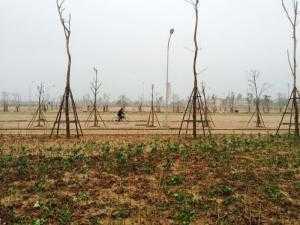 Bán Đất liền kề khu Thanh mai 1 TNR Đồng văn 81m2 chiết khấu 3.5%