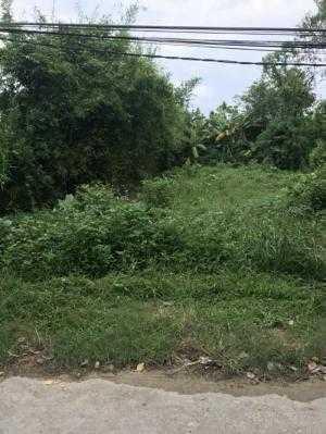 Bán nhà đất Mặt tiền Phú Thượng Phú Vang Thừa Thiên Huế