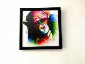 Tranh Treo Tường Rainbow Monkey Kích Thước 30x30 cm - MSN1831073
