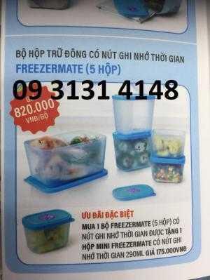Hộp bảo quản thực phẩm đông lạnh Tupperware,  thịt cá,hộp thực phẩm tươi sống