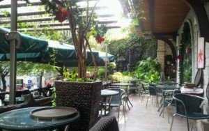 Sang Nhượng Quán Café, 522m2 Mặt Tiền Đường Quốc Lộ 50, Phong Phú.