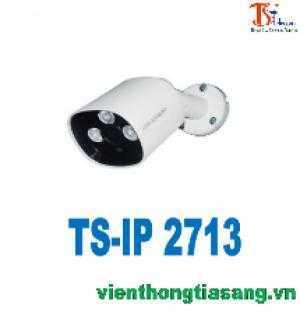 Camera TS-IP 2713