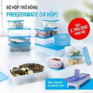 Hộp Bảo Quản Thực Phẩm  thịt cá ngăn đông  Tupperware 14 hộp giá khuyến mãi tặng khay đá silicon Ice Tray có nắp đậy,