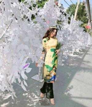 Áo dài gấm in 3d cao cấp hàng chuẩn y hình