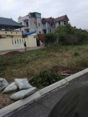 Bán 129m2 đất khu đấu giá 31ha, Trâu Qùy, giá bán 31,5 tr/m2