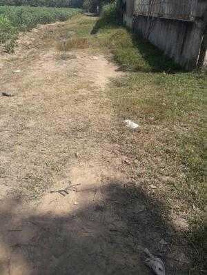 Đất 10m x 30m đường đất 6m ấp 4 xã Phạm Văn Cội, Củ Chi