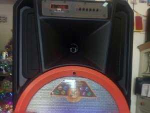 Loa kéo Karaoke DV12B cao cấp