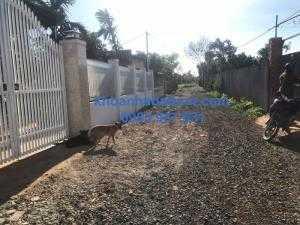 Bán Nhà vườn,35*75m,gần 2 sào 6,hẻm Võ Văn Kiệt,gần Đài Phát Thanh,thông qua 170 ywang,nở hậu,phân đc 14 lô.