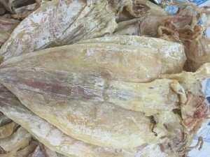 Khô mực câu Phú Quốc 6-8 con/kg