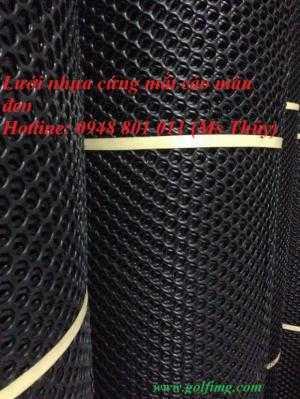 Lưới nhựa cứng mắt cáo màu đen dùng trong nhà xưởng
