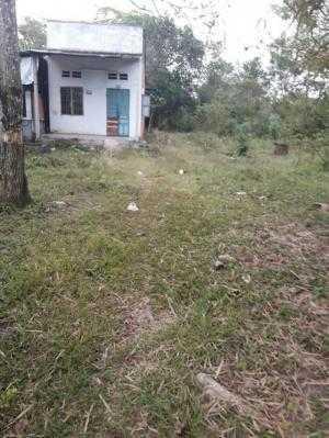 Nhà 6m x 50m,nở hậu 14m ấp 4 xã Phạm Văn Cội, Củ Chi