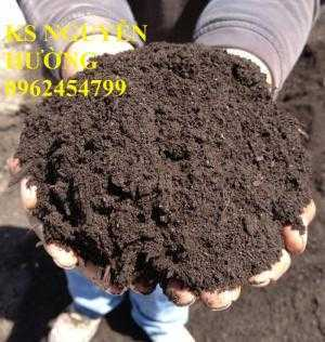 Cung cấp số lượng lớn phân hữu cơ, phân vi sinh chất lượng. giao hàng toàn quốc