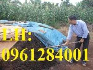 Chuyên cung cấp số lượng lớn phân chuồng hoai mục cho các nhà vườn, trang trại