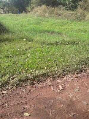 Đất 70m x 43m,nở hậu 100m đường nông thôn thuộc xã Phú Hòa Đông, Củ Chi