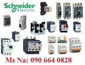 Đại lí cung cấp thiết bị điện Schneider Vietnam
