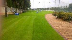 Cỏ nhân tạo,cỏ bóng đá